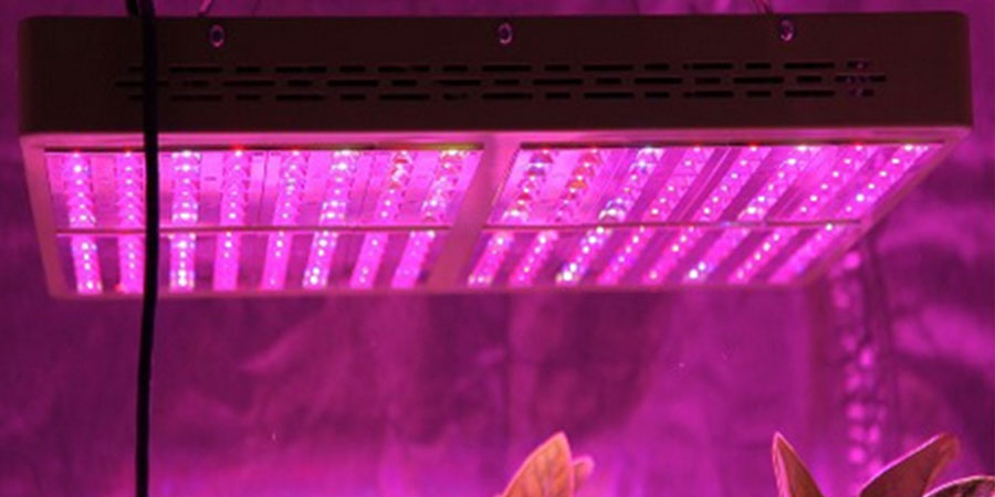Switchable LED Grow Lights